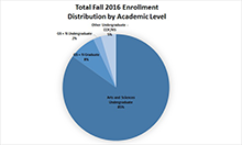 Enrollment by Academic Level